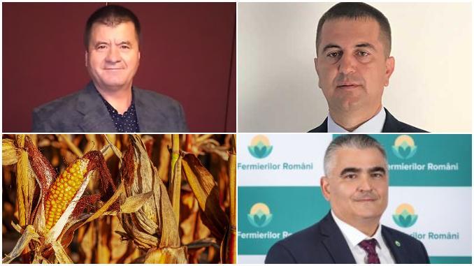 Traderii SE JOACĂ cu șansele agricultorilor prin manevrele de pe piața porumbului (Exclusiv)