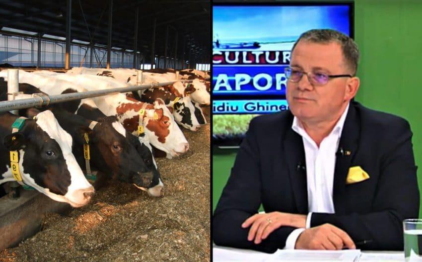 Crescătorii de vaci, în conflict cu Ministerul Agriculturii după Ordinul privind SCZ