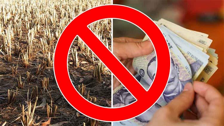 DEZASTRU pentru fermieri! Banii pentru despăgubiri NU EXISTĂ în buget