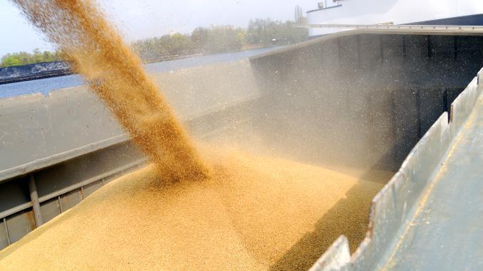 Cât grâu urmează să exporte Uniunea Europeană în sezonul 2020-2021