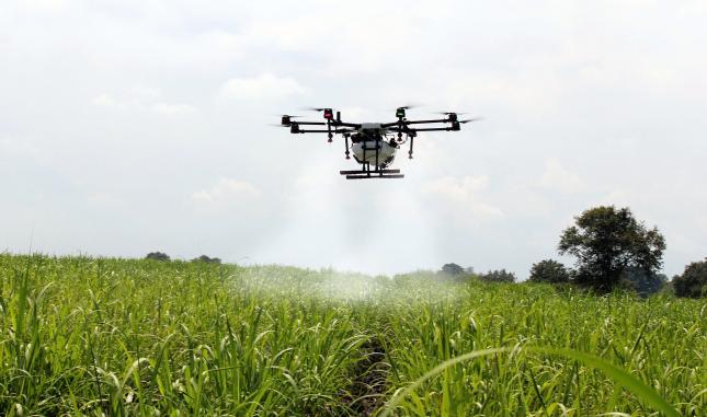 """Secret dezvăluit – ameliorarea plantelor cu drone. """"O investiție sigură"""""""