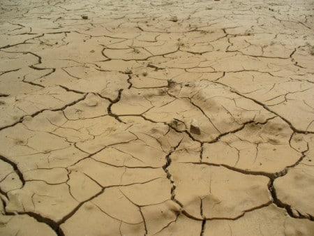 Regiunile unde se vor înregistra deficite de apă în sol (agrometeo 17-23 aprilie)